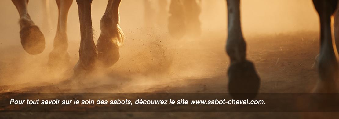 sabot cheval-pied du cheval-soins sabots